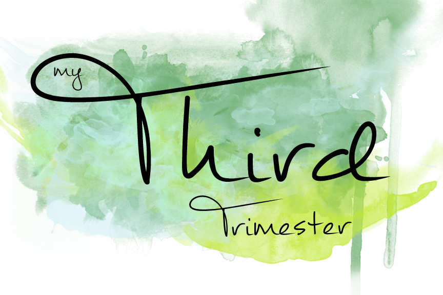 My Third Trimester Recap